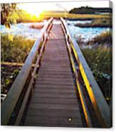 Lead Me To The Light Canvas Print