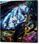 Leaf Series 3 Canvas Print