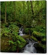 Lee Falls Cascades Canvas Print