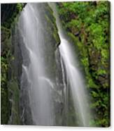Lee Falls Close Up Canvas Print