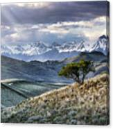 Lemhi Light Canvas Print
