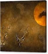 Leopards No 01 Canvas Print