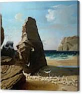 Les Petites Mouettes, Small Seagulls Canvas Print