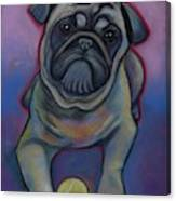 Lets Play Pug  Canvas Print