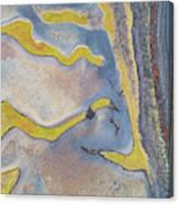 Longnecks And Black Beach Canvas Print