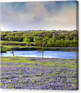 Mach Road Blubonnet Panorama In Evening Light Canvas Print