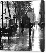 Many Thanks To The Rain Canvas Print