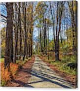 Maple Lane Old Fairgrounds Road Nh Canvas Print