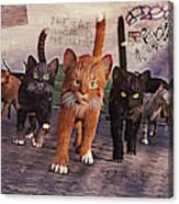 March Of The Mau Canvas Print