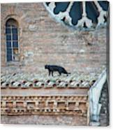 Mary's Cat Canvas Print