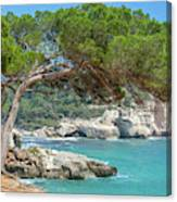 Mediterranean Landscape In Menorca Canvas Print