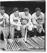 Members Of The Chicago Cubs Canvas Print