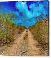 Middle Caicos Rocky Road Canvas Print