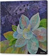 Midnight Magnolia II Canvas Print