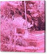Monochromerose Countyroad Canvas Print