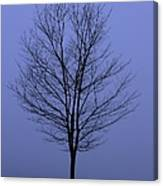 Moody Blue November Day Canvas Print