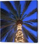 Moonrise Near Lit-up Palm Tree Canvas Print