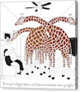 More Giraffes Canvas Print