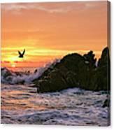 Morning Flight Serenity Canvas Print