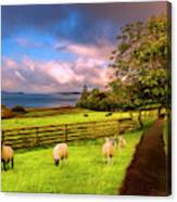 Morning Grazing Painting Canvas Print