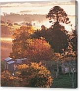 Morning Mist Over South Coast Farmland Canvas Print