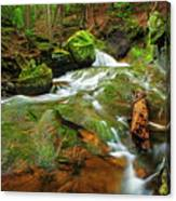 Mossy Glen Rollers Canvas Print