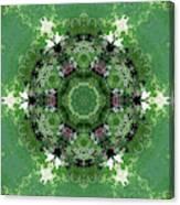 Mossy Green Canvas Print