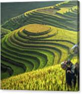 Mother And Dauther Hmong, Working Canvas Print