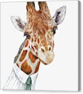 Mr Giraffe Canvas Print