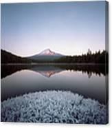 Mt. Hood Lit By Sunrise Canvas Print