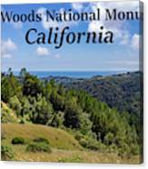 Muir Woods National Monument California Canvas Print