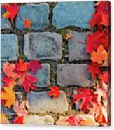 Natural Autumn Leaf Background  Canvas Print