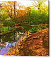 Nature's Heart Healer Canvas Print