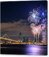 New Year Fireworks Canvas Print