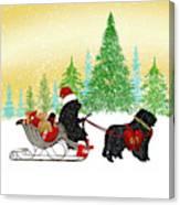 Newfoundland Dog Christmas Canvas Print