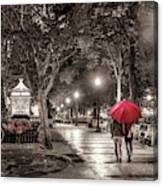 Night Walk Canvas Print