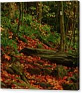 Northside Of Mount Greylock At Canvas Print
