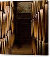 Oak Barrels At The Wine Cellar Canvas Print