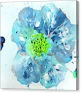 Oceanbreeze Blue-green Windflower Canvas Print