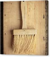 Old Bristle Brush Canvas Print