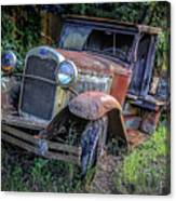 Old Model Aa Ford In The Jungle 2 Canvas Print