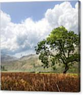 Old Scottish Farmlands Under The Clouds Canvas Print