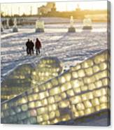 On The Ice Canvas Print