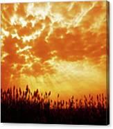 Orange Tinted Sky Illustrating Canvas Print