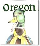 Oregon Duck Canvas Print