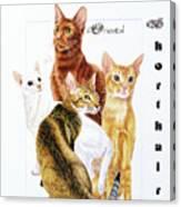Oriental Shorthair Canvas Print