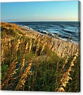 Outer Banks View Canvas Print