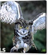 Owls Mascot 2 Canvas Print