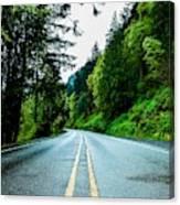 Pacific Northwest Road Canvas Print
