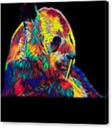 Panda Little Bear Australia Animal Color Designed Canvas Print